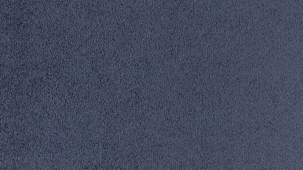 SmartStrand Silk Natural 584 Blueberry Carpet Flooring
