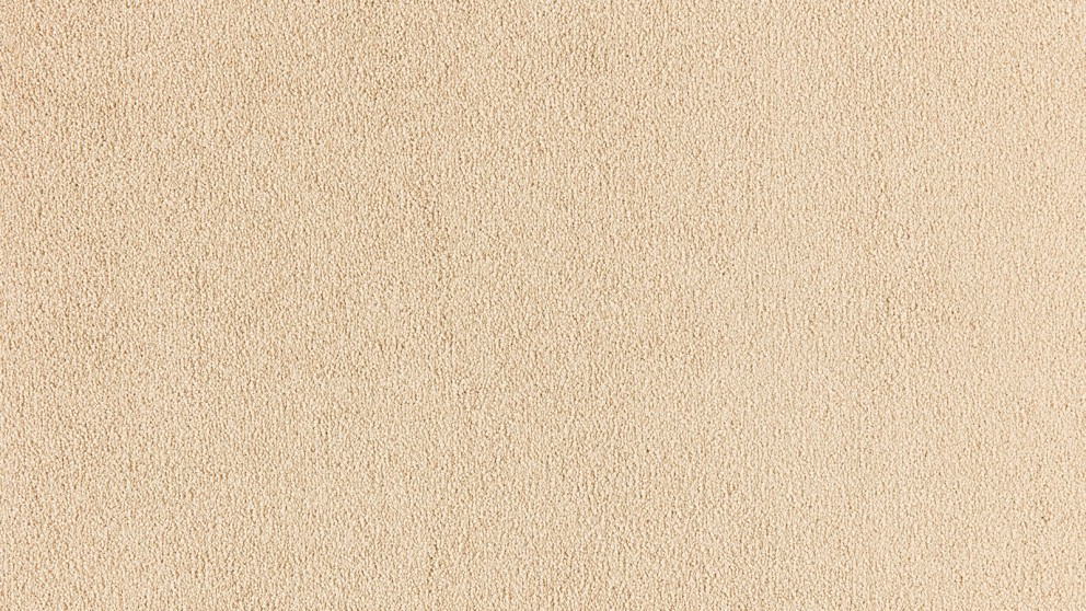 SmartStrand Silk Natural 728 Champagne Bubble Carpet Flooring