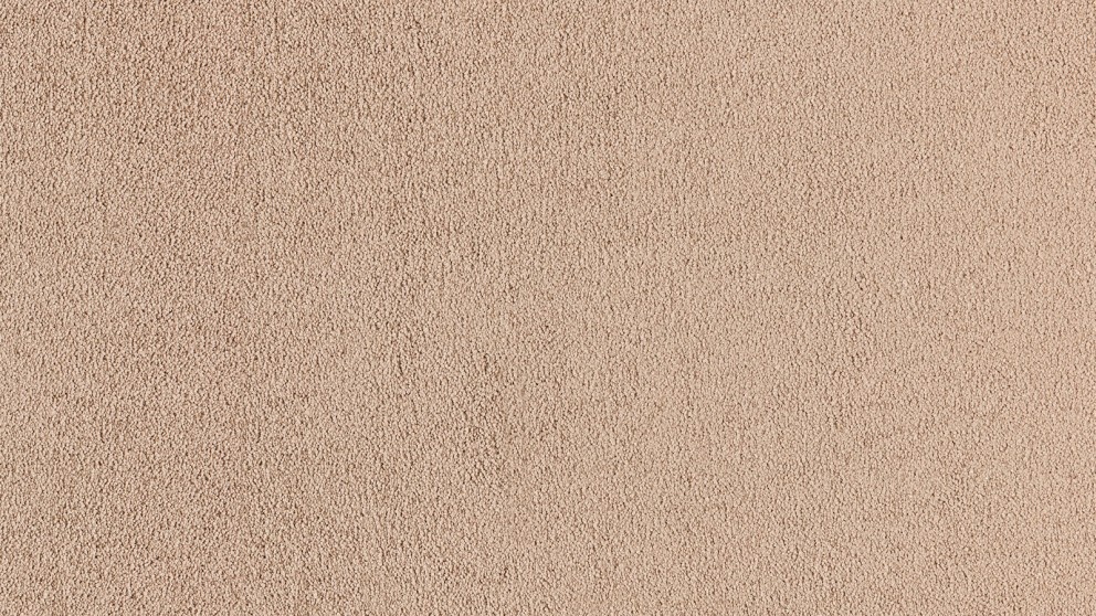 SmartStrand Silk Natural 754 Wooden Plank Carpet Flooring