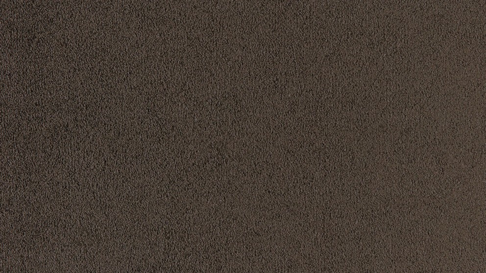 SmartStrand Silk Natural 888 Coffee Shoppe Carpet Flooring