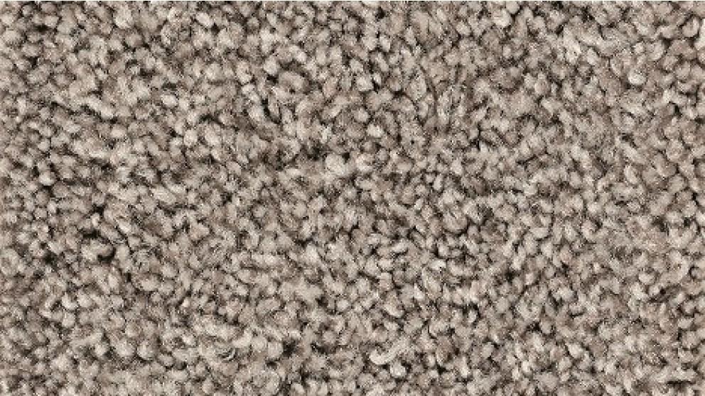 Smartstrand Forever Clean Chic Tonal Silverado Carpet Flooring