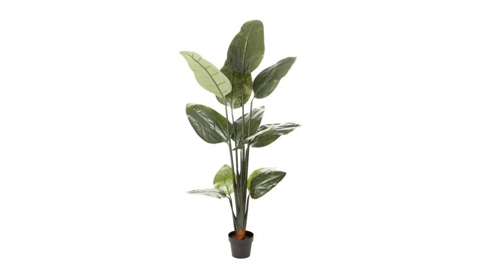 Cooper & Co. Artificial Banana Leaf Tree - 180cm