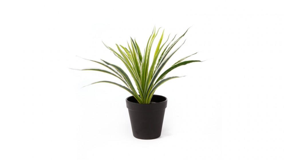 Cooper & Co. Artificial Spider Leaf Potted Plant - 30cm