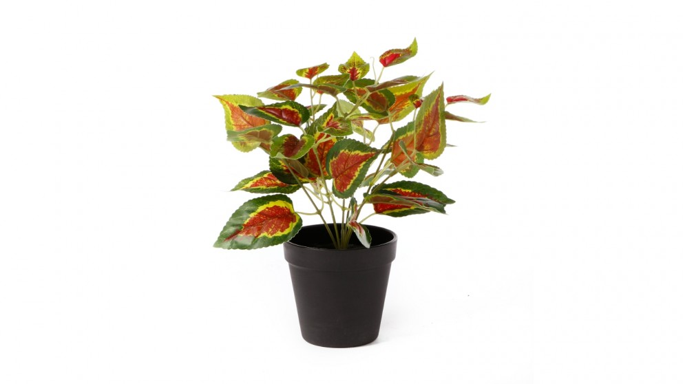Cooper & Co. Artificial Red Leaf Potted Plant - 28cm