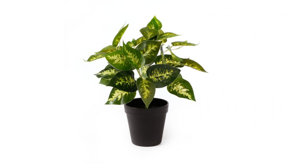 Cooper & Co. Artificial Dieffe Leaf Potted Plant -28cm