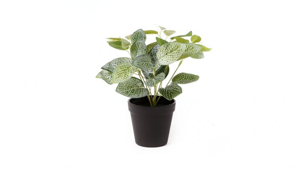 Cooper & Co. Artificial Vein Leaf Potted Plant - 28cm