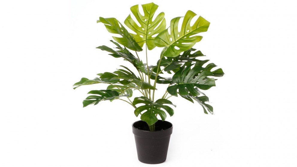 Cooper & Co. Artificial Botatnica Monstera Potted Plant - 47cm