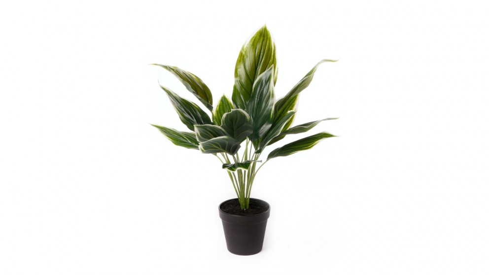 Cooper & Co. Artificial Hearty Leaf Potted Plant - 47cm