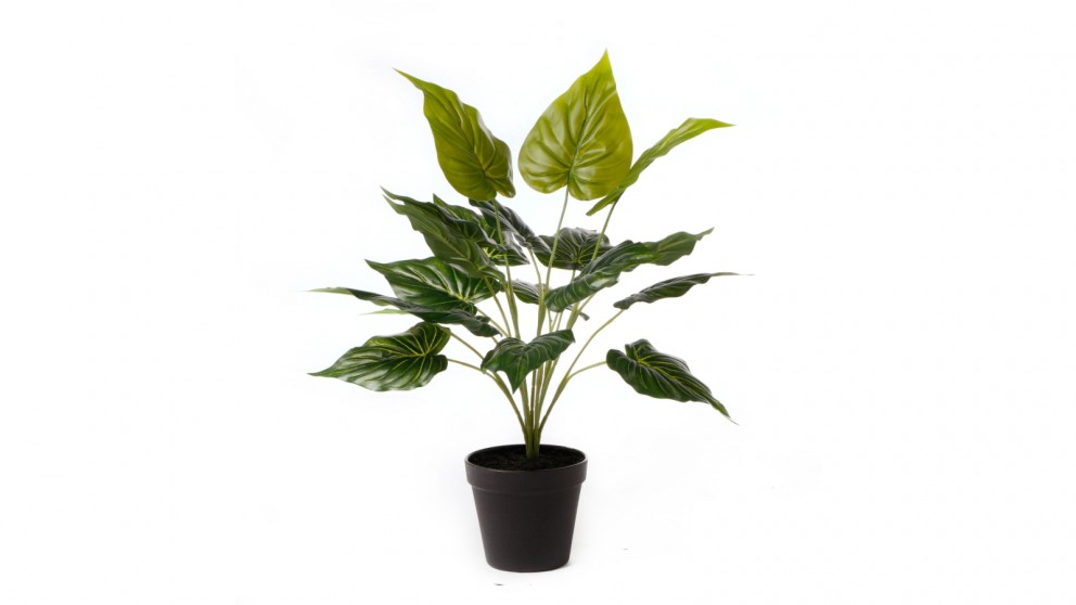 Cooper & Co. Artificial Belly Leaf Potted Plant - 47cm