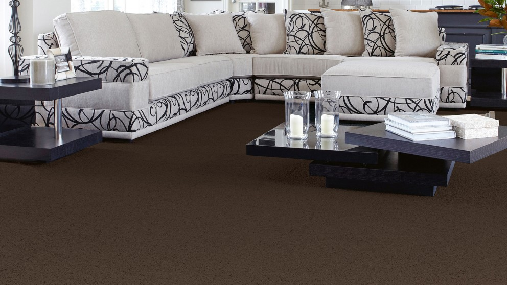 SmartStrand Forever Clean Classic Cat Tail Carpet Flooring