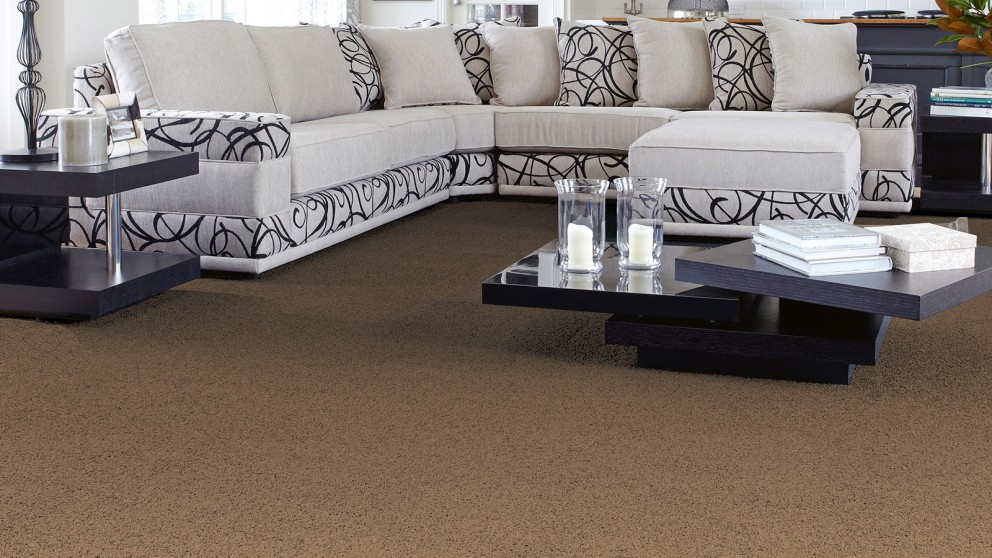 SmartStrand Forever Clean Classic Country Path Carpet Flooring