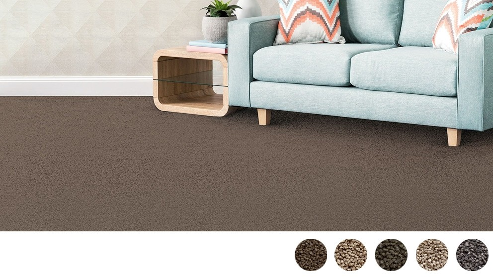 SmartStrand Silk Forever Clean Silk Trends Tonal Carpet Flooring