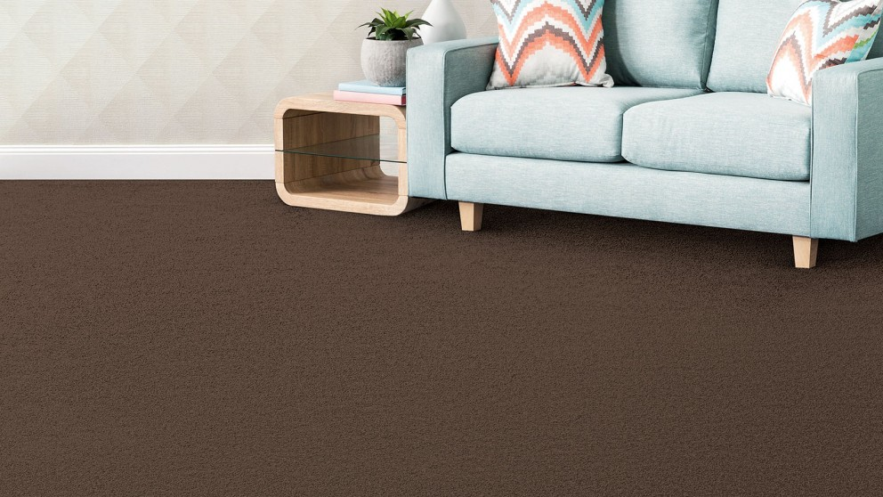 SmartStrand Silk Forever Clean Silk Trends Tonal Camelot Carpet Flooring
