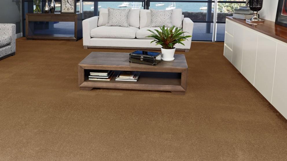 SmartStrand Silk Forever Clean Silk Trends Nature Trail Carpet Flooring