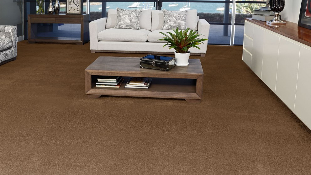 SmartStrand Silk Forever Clean Silk Trends Lush Suede Carpet Flooring