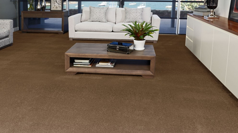SmartStrand Silk Forever Clean Silk Trends Burnished Brown Carpet Flooring