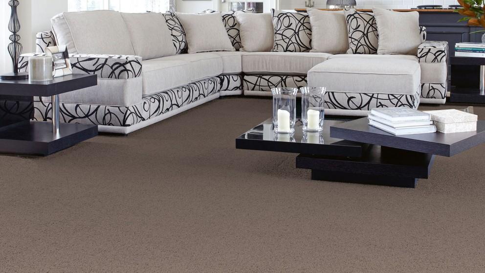 SmartStrand Forever Clean Classic Driftwood Carpet Flooring