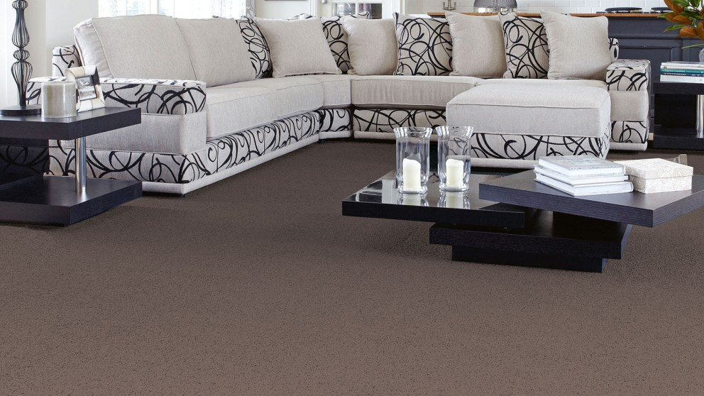 SmartStrand Forever Clean Classic Dark Musk Carpet Flooring