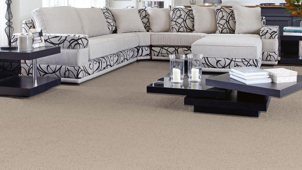 SmartStrand Forever Clean Classic Arrow Head Carpet Flooring