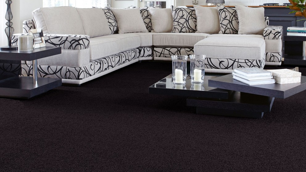 Buy SmartStrand Forever Clean Classic Blackberry Carpet Flooring | Harvey Norman AU