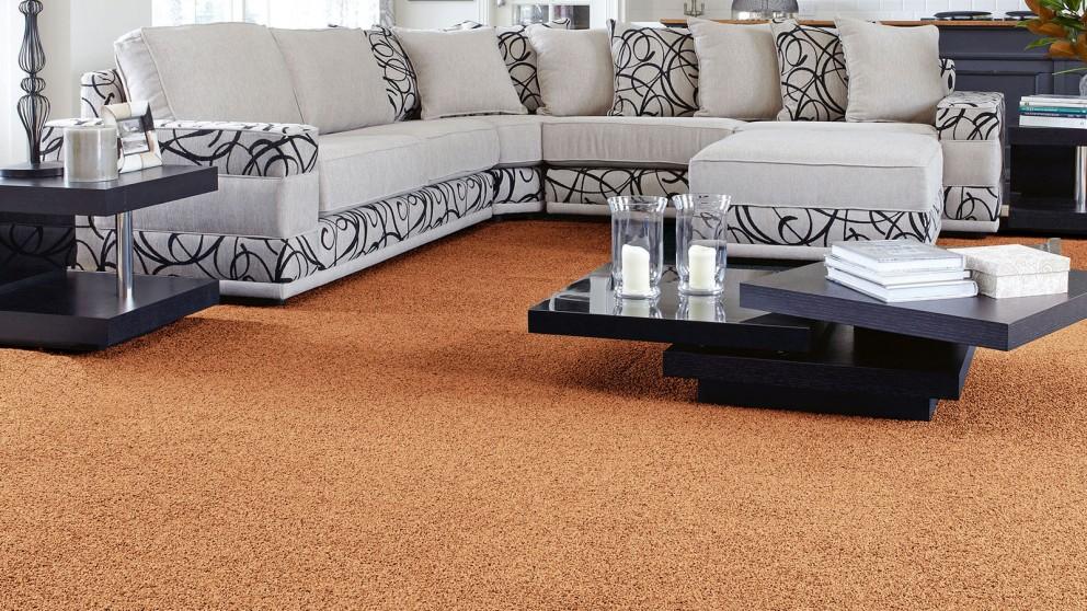 SmartStrand Forever Clean Classic Ranchero Carpet Flooring