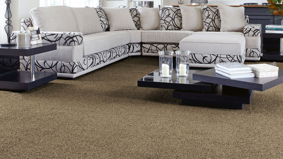 SmartStrand Forever Clean Classic Weathered Barn Carpet Flooring