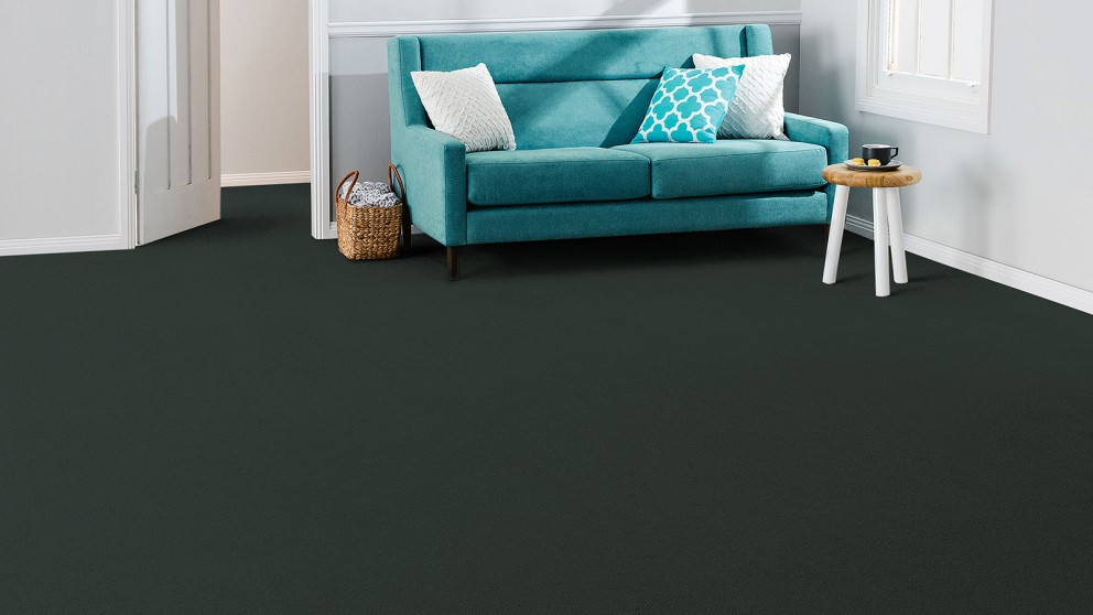 SmartStrand Forever Clean Splendor - Ebony Star Carpet Flooring
