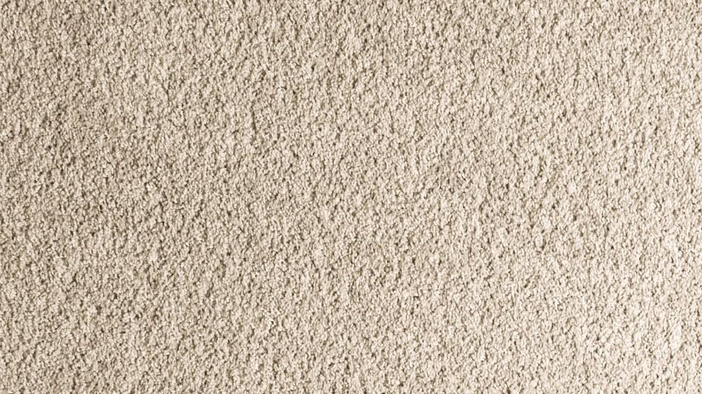 tan carpet floor. Item Added To Cart. Back Close. SmartStrand Forever Clean Accent - Gleaming Tan Carpet Flooring Floor D