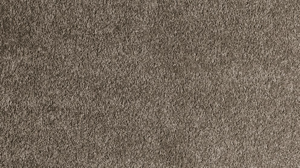 Buy Smartstrand Forever Clean Chic Mineral Brown Carpet