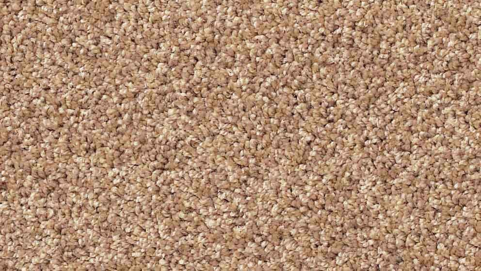Buy Smartstrand Forever Clean Classic Soft Bamboo Carpet