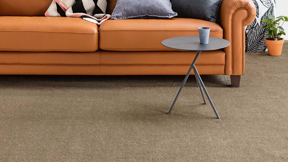 Dreamweaver New Horizon Sparrow Carpet Flooring