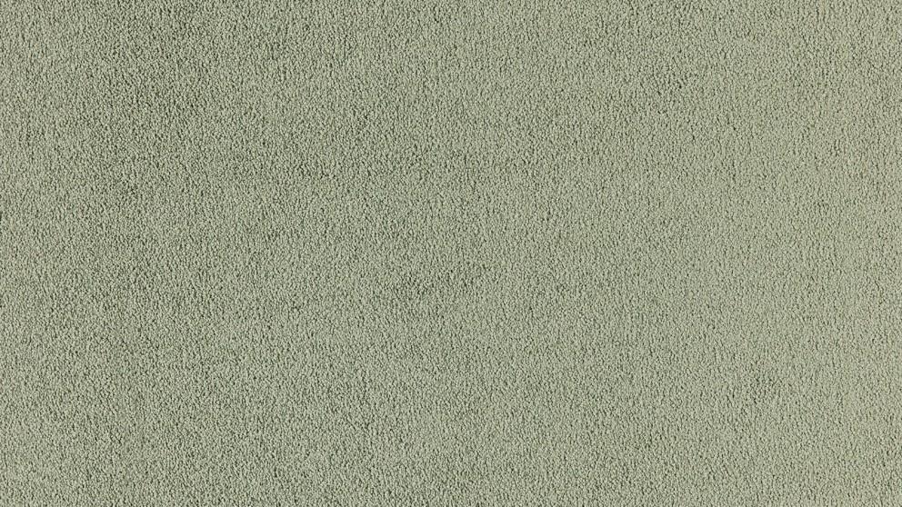 SmartStrand Silk Natural 656 Green Glade Carpet Flooring