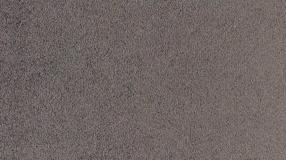 SmartStrand Silk Natural 959 Grey Flannel Carpet Flooring