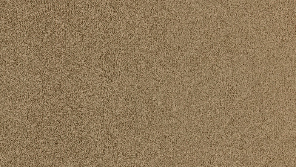 SmartStrand Silk Natural 846 Hearth Beige Carpet Flooring