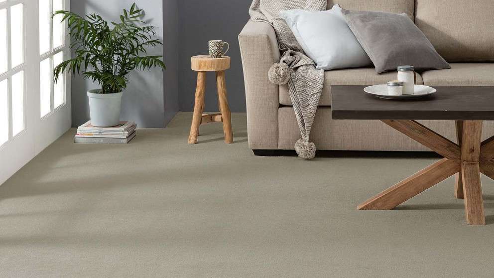 Dreamweaver Coastal Comfort Sterling Carpet Flooring