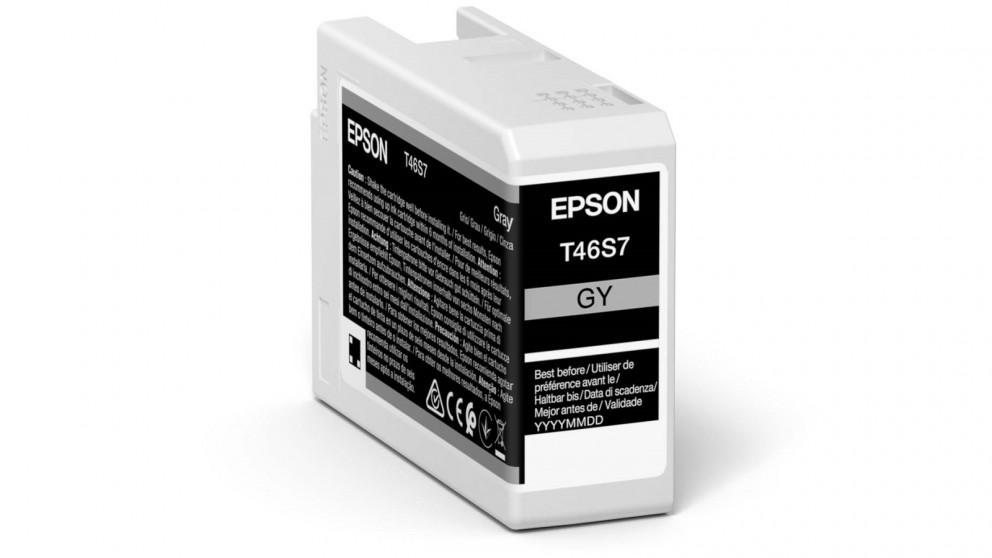 Epson UltraChrome Pro10 Grey Ink Cartridge