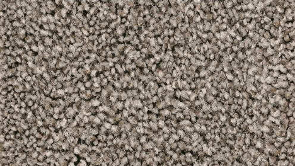 Smartstrand Forever Clean Chic Tonal Tradewind Carpet Flooring
