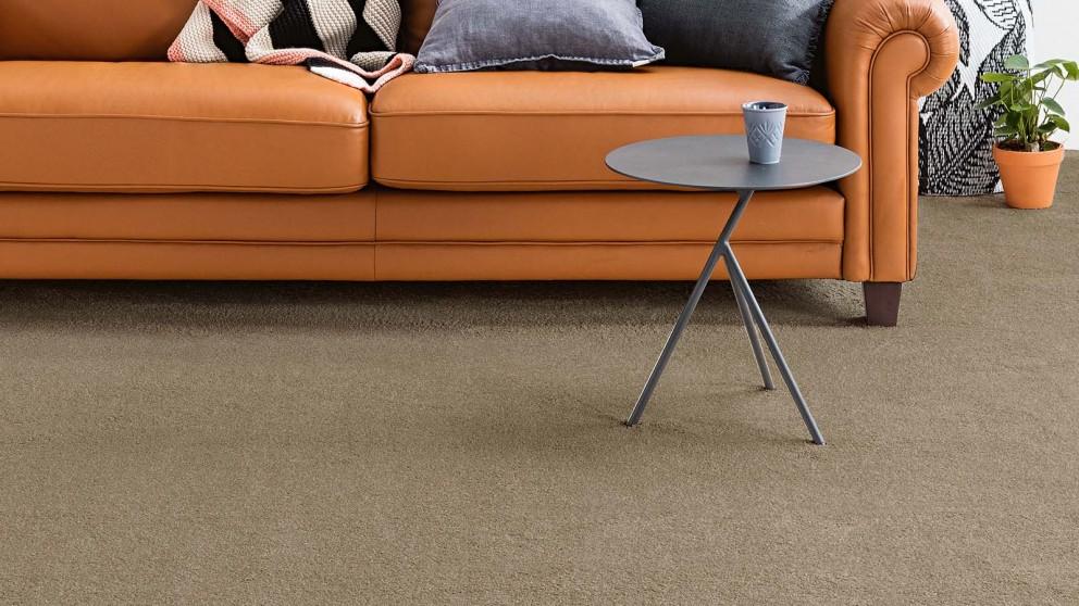 Dreamweaver New Horizon Trendy Carpet Flooring