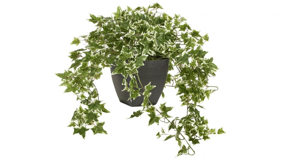 Cooper & Co. 76cm Tall Potted Artificial Ivy Decor Fake Plant