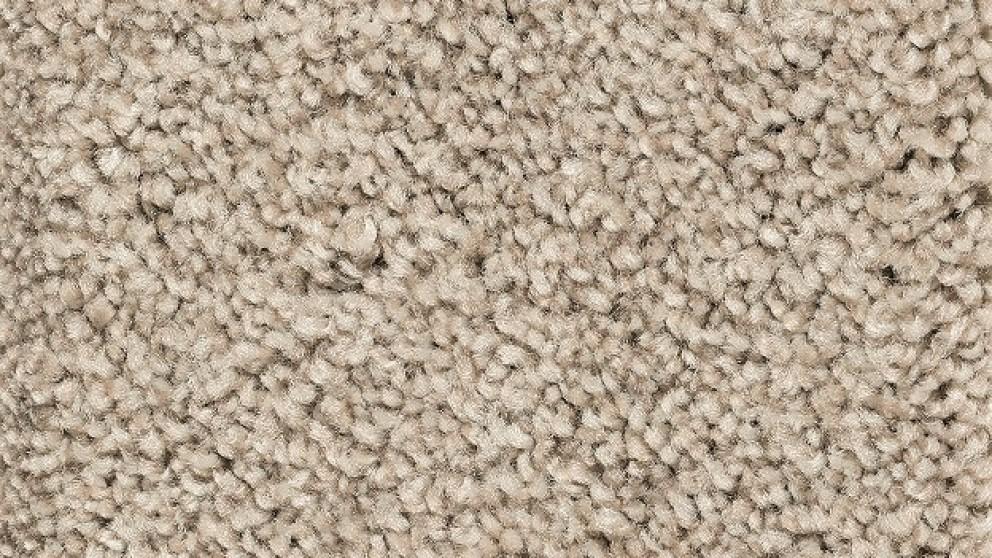 Smartstrand Forever Clean Chic Tonal Turnstone Carpet Flooring