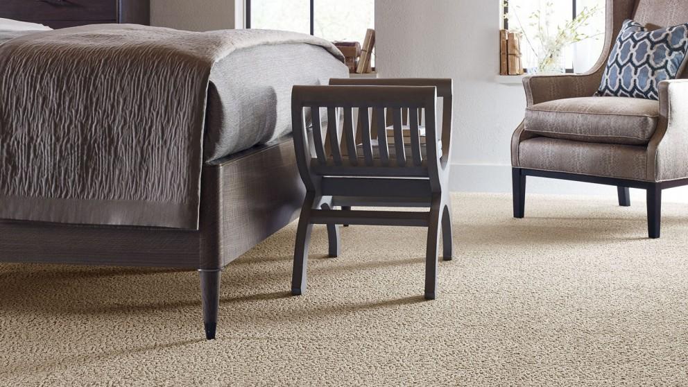 Karastan Unscripted Edge Moon Glow Carpet Flooring