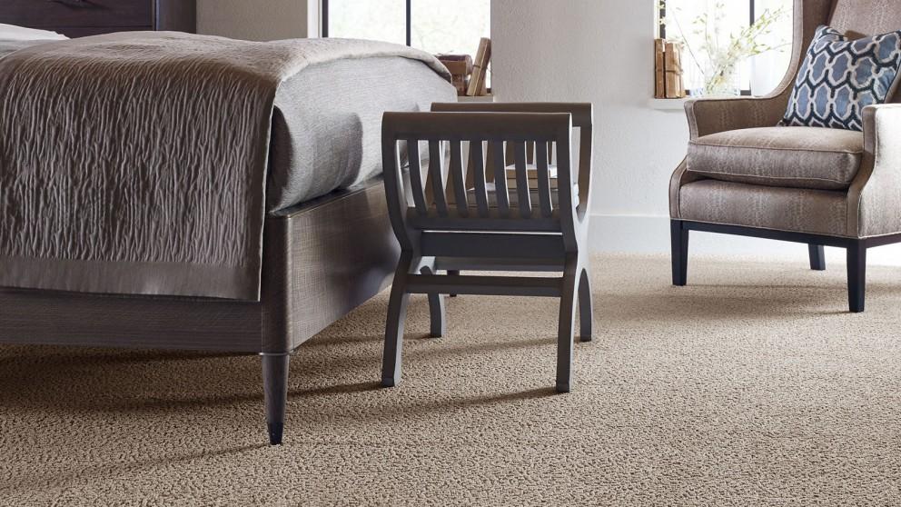 Karastan Unscripted Edge Safari Carpet Flooring
