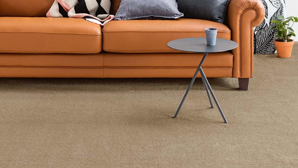 Dreamweaver New Horizon Vivid Carpet Flooring