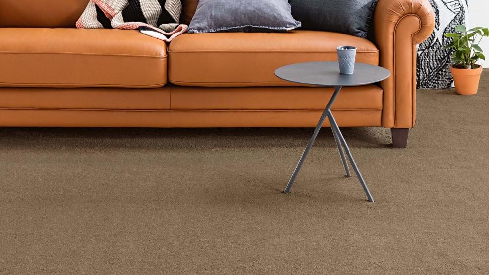 Dreamweaver New Horizon Weathered Carpet Flooring