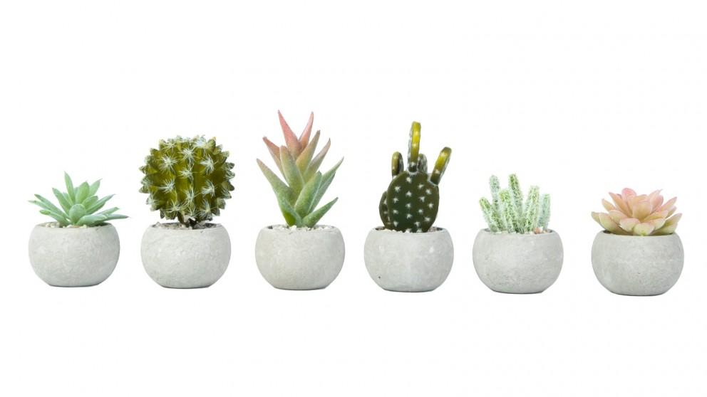 Cooper &Co. Artificial Fake Succulent Plant In Pot Mini Potted Plants - 6 Pieces