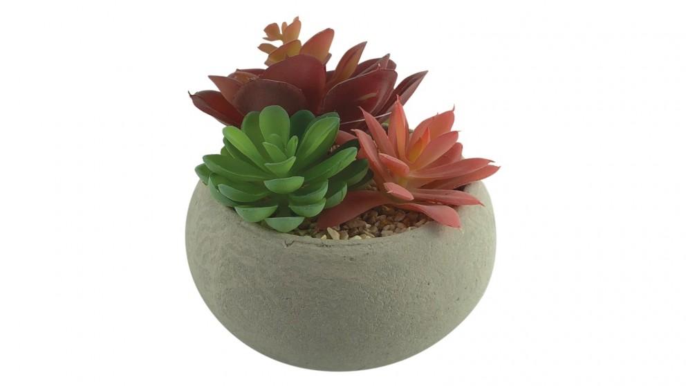 Cooper &Co. Artificial Succulent Garden Con Pot