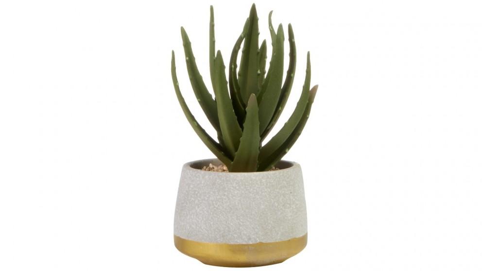 Cooper & Co. Aloe Vera Artificial Plant - 21cm
