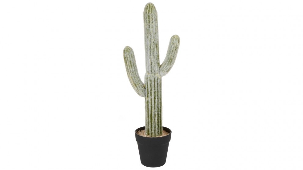 Cooper & Co. Mexican Cactus Artificial Plant - 61cm