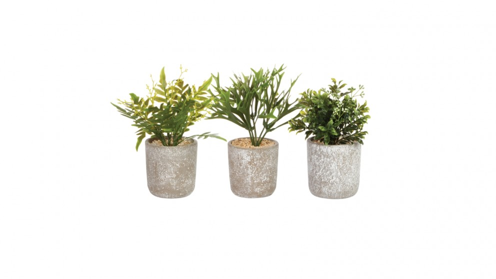 Cooper & Co. Native Artificial Plant 25cm - Pack of 3