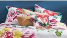 Charlotte European Pillowcase